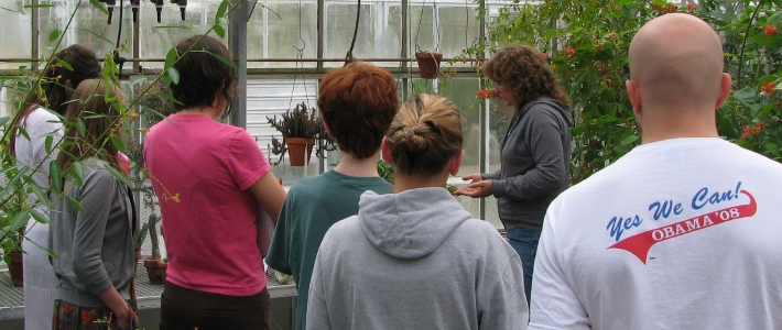 General Ecology Leaf Adaptations Lab
