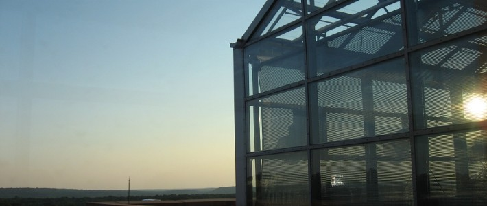 Late Afternoon at BPB Greenhouse